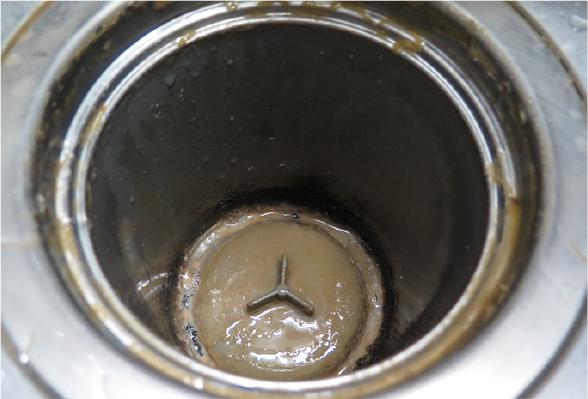 排水口のぬめり